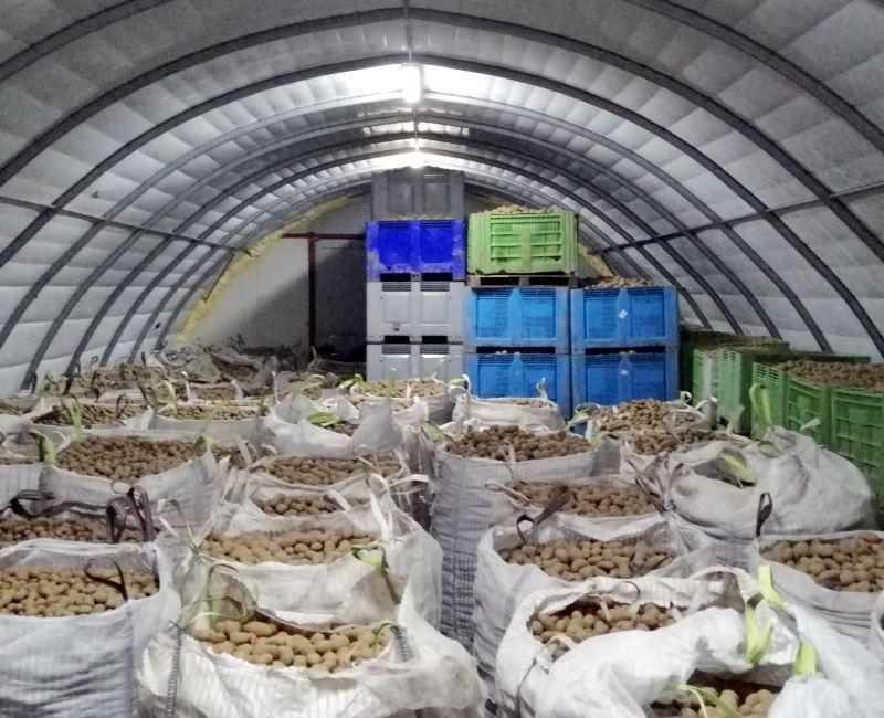 Magazyn na ziemniaki w lekkiej hali tunelowej (male)